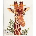Giraffe  - #BOR15  -  PRINT