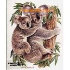 Koalas  - #BOR17  -  PRINT