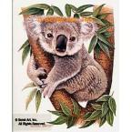 Koala  - #BOR18  -  PRINT