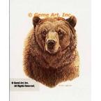 Grizzily Bear  - #BOR22  -  PRINT