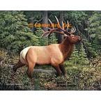 Elk  - #BOR32  -  PRINT