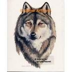 Wolf  - #BOR42  -  PRINT