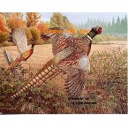Pheasants  - #BOR44  -  PRINT