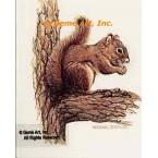Squirrel  - #BOR7  -  PRINT
