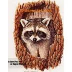 Raccoon  - #BOR8  -  PRINT