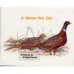 Pheasants  - #COR1  -  PRINT