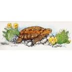 Desert Tortoise  - COR111  -  PRINT