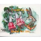 Hummingbirds  - #COR123  -  PRINT