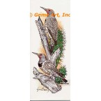 Common Flicker  - COR126  -  PRINT
