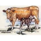 Guernsey Cow  - #COR18  -  PRINT