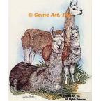 Llamas  - #COR25  -  PRINT