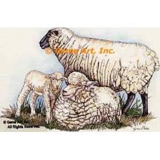 Sheep  - #COR29  -  PRINT