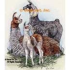 Llamas  - #COR46  -  PRINT