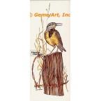 Meadowlark  - #COR64  -  PRINT