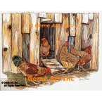 Hen House  - #COR8  -  PRINT
