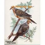 Doves  - #COR87  -  PRINT
