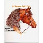 Horse  - #COR92  -  PRINT