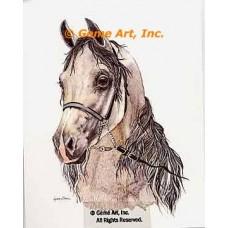 Horse  - COR93  -  PRINT