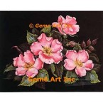 Wild Roses  - #ZOR1000  -  PRINT