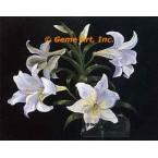 White Lilies  - #ZOR1001  -  PRINT