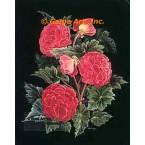 Begonias  - #ZOR1006  -  PRINT