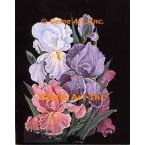 Iris Bouquet  - ZOR1022  -  PRINT