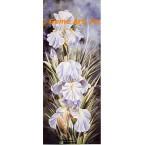 Amazing Grace Iris  - LOR620  -  PRINT