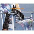 Bunnies  - #ZOR321  -  PRINT