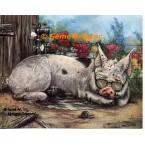 Cool Pig  - #ZOR325  -  PRINT