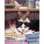 Cats  - #ZOR338  -  PRINT