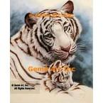 White Tiger & Cub  - #ROR407  -  PRINT