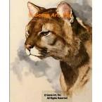 Cougar  - #ROR414  -  PRINT