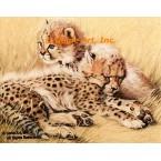 Cheetah Cubs  - #ROR415  -  PRINT