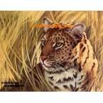 Leopard  - #ROR419  -  PRINT