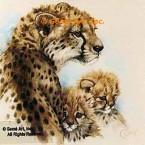 Cheetahs  - #ROR417  -  PRINT