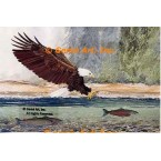 Eagle & Fish  - #MOR704  -  PRINT