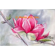 Pink Magnolia  - #MOR734  -  PRINT