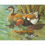 Ducks  - #GXOR3  -  PRINT
