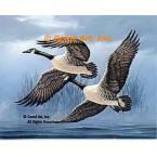 Canadian Geese  - #QOR25  -  PRINT