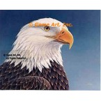 Eagle  - #QOR30  -  PRINT