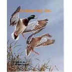 Mallard Ducks  - #QOR33  -  PRINT