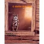 Eagle Owl  - #QOR8  -  PRINT