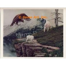 Eagle & Mountain Goats  - FOR2  -  PRINT