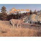 Mule Deer  - #FOR5  -  PRINT
