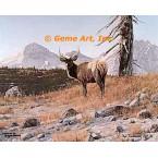 Elk  - #FOR6  -  PRINT