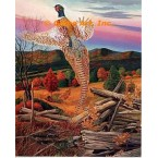Pheasant in Autumn Woods  - #MOR601  -  PRINT