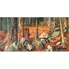 Red Fox  - #MOR609  -  PRINT