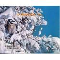 Blue Jay In Snowtree  - #MOR619  -  PRINT