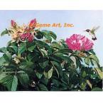 Roses & Hummingbird  - MOR625  -  PRINT