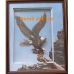 Eagle Project #IOR57